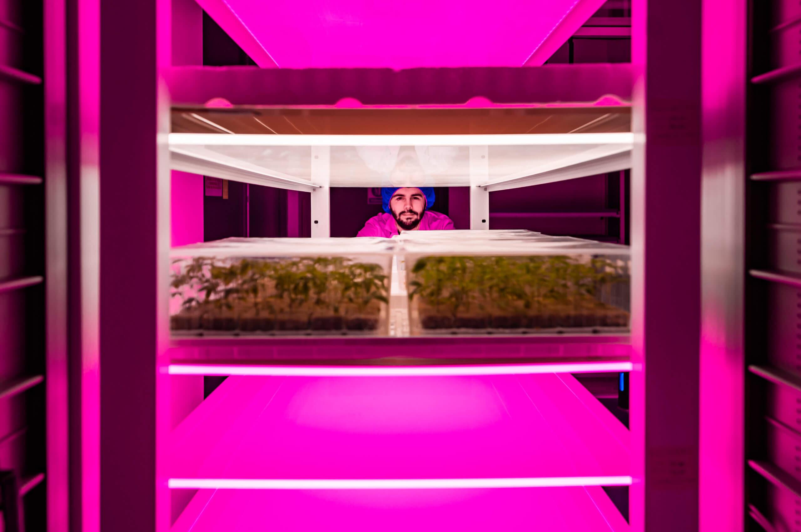 Tissue Culture Vertical Farm