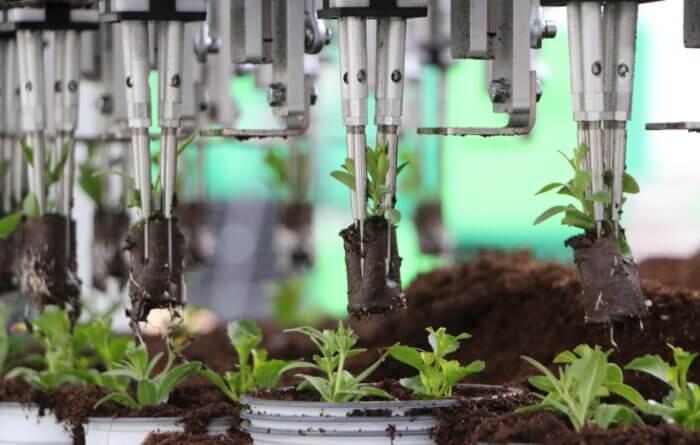 Visser Multi Planter thumbnail